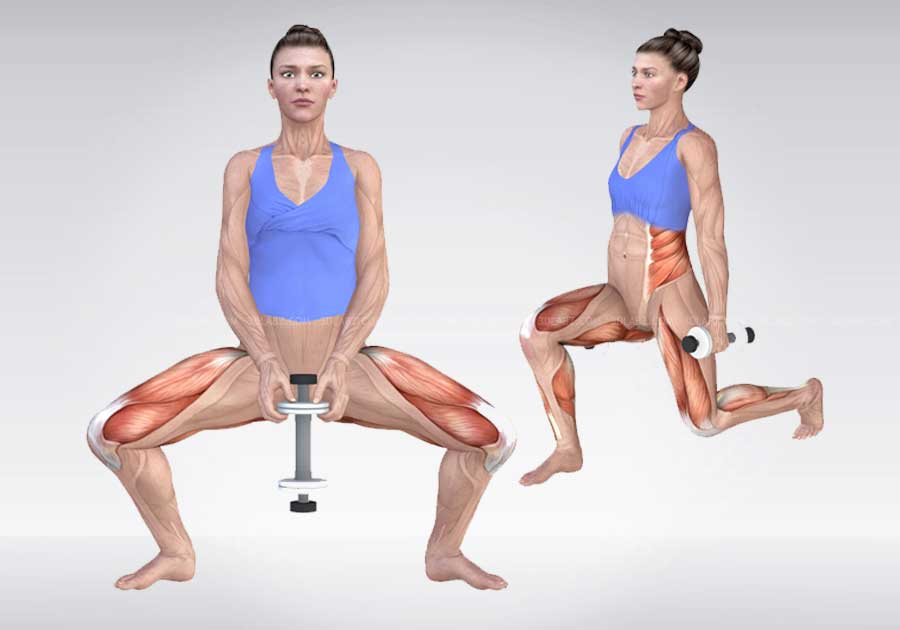 Exercise Anatomy 3D Illustrations |Price, Cost, Charges