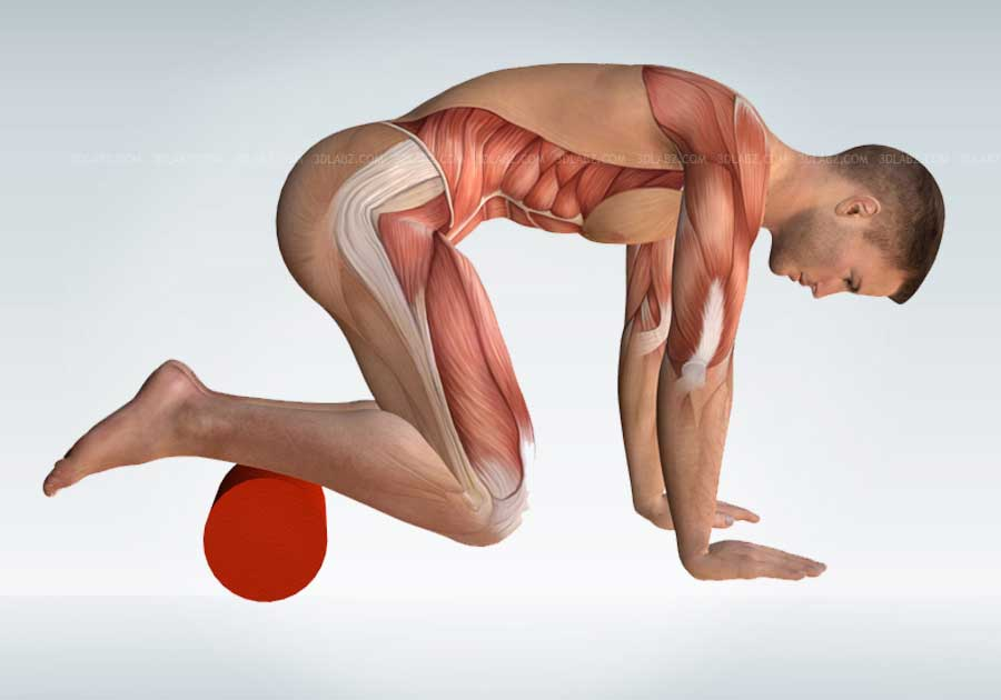 foam roller core exercises pdf